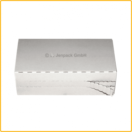 225x110x70 Faltkarton mit Adhäsionsverschluss zum aufreissen weiß front
